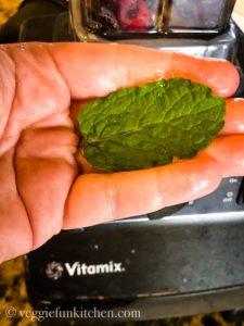 mint leaf on hand