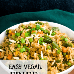 fried rice in white bowl with text overlay