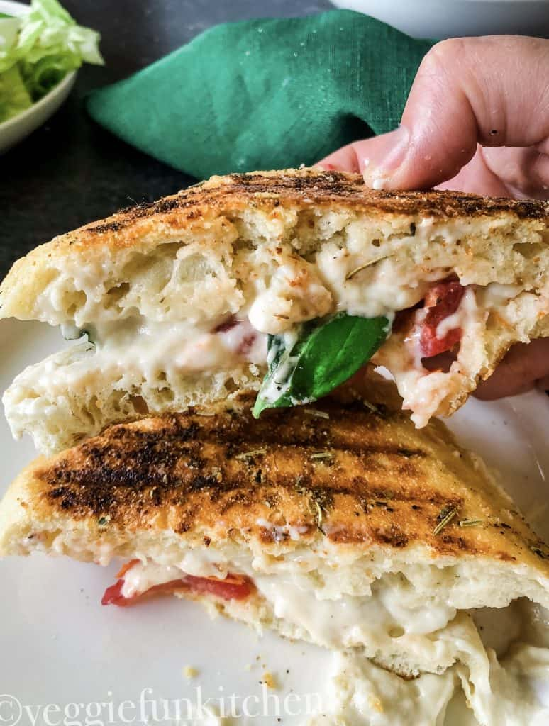 caprese panini held in hand and on white plate with green salad