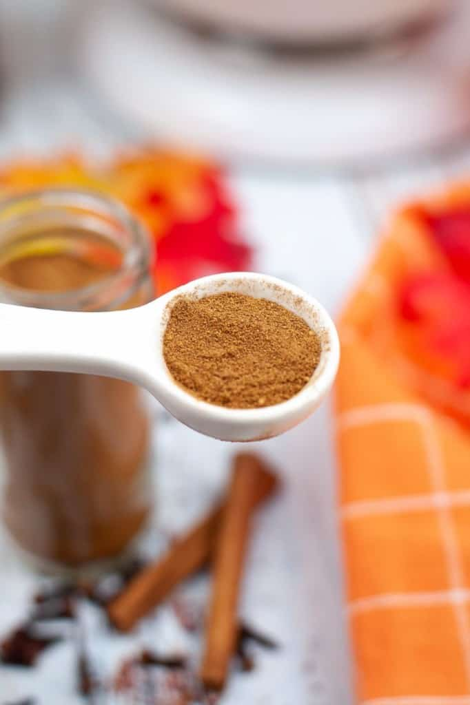 spoonful of pumpkin pie spice against seasonal background of cinnamon sticks, leaves, and whole cloves.